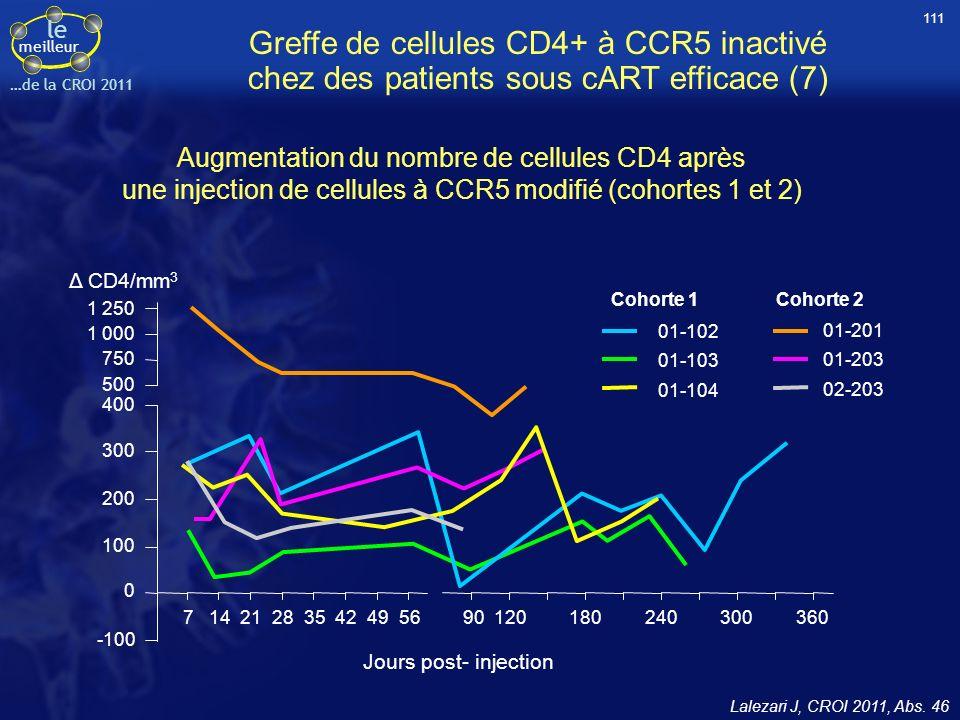 111 Greffe de cellules CD4+ à CCR5 inactivé chez des patients sous cART efficace (7)