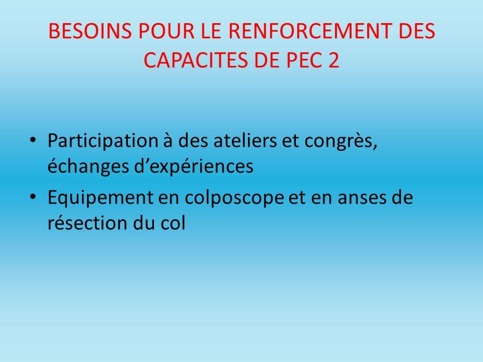 BESOINS POUR LE RENFORCEMENT DES CAPACITES DE PEC 2