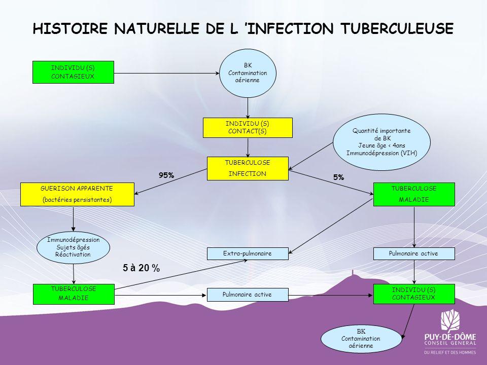 HISTOIRE NATURELLE DE L 'INFECTION TUBERCULEUSE