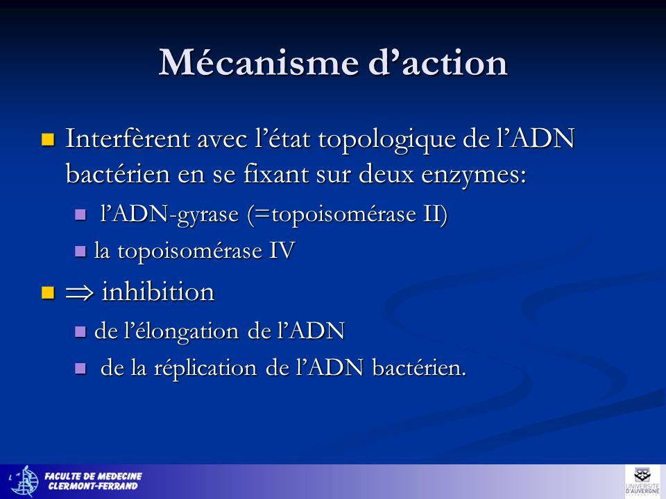 Mécanisme d'actionInterfèrent avec l'état topologique de l'ADN bactérien en se fixant sur deux enzymes:
