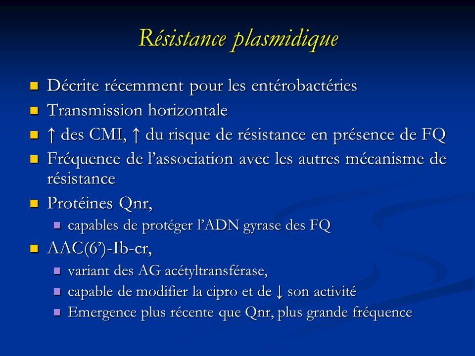 Résistance plasmidique