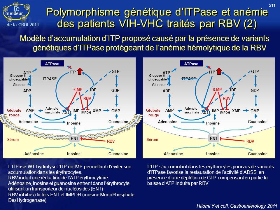 211 Polymorphisme génétique d'ITPase et anémie des patients VIH-VHC traités par RBV (2)