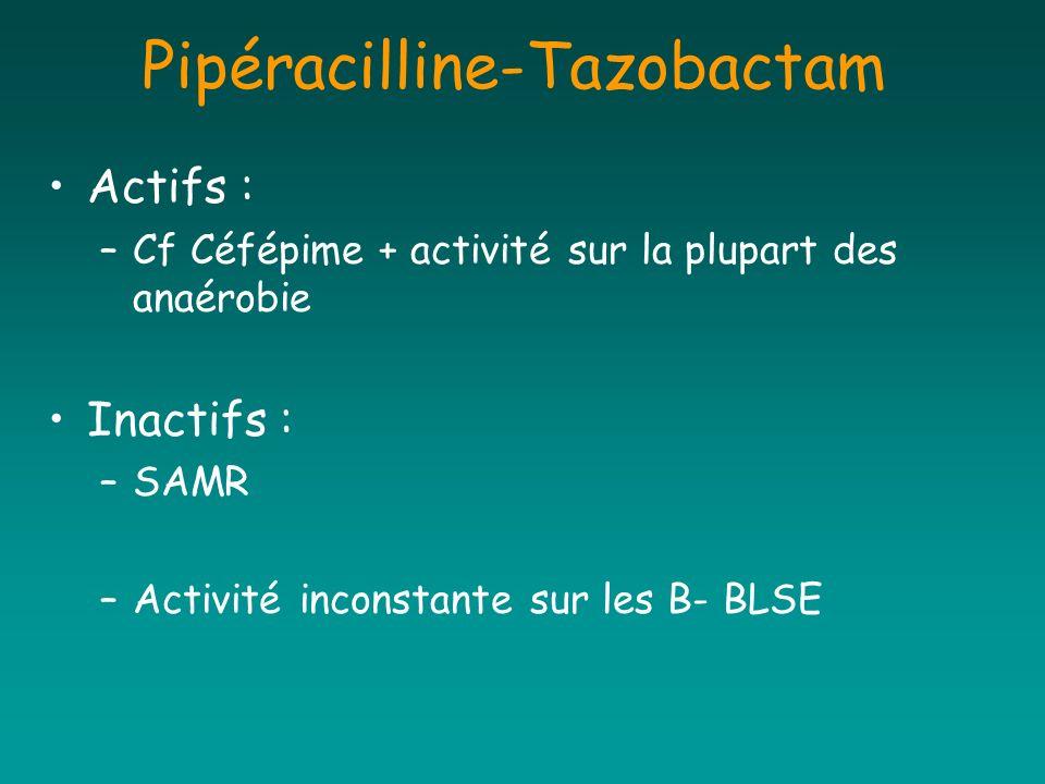 Pipéracilline-Tazobactam