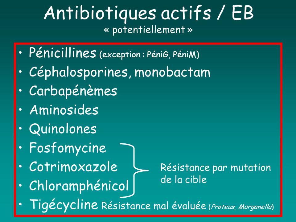 Antibiotiques actifs / EB « potentiellement »