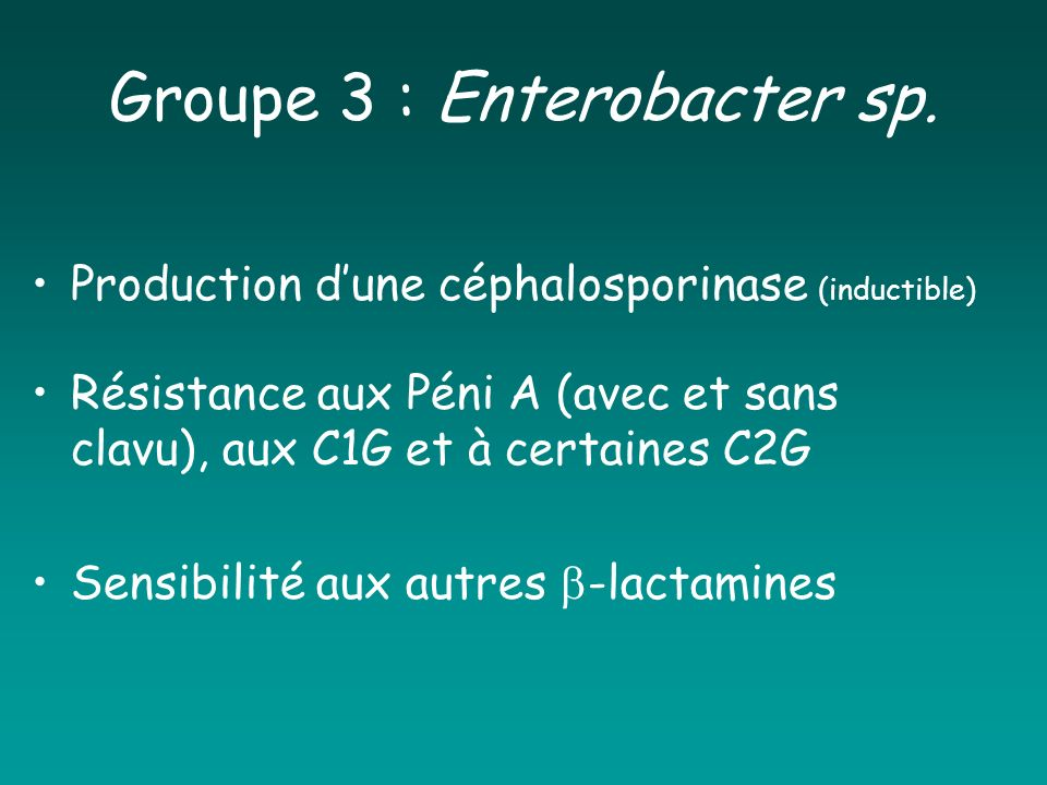 Groupe 3 : Enterobacter sp.