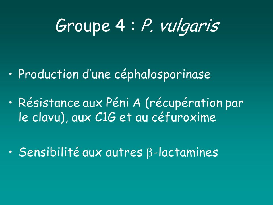 Groupe 4 : P. vulgaris Production d'une céphalosporinase