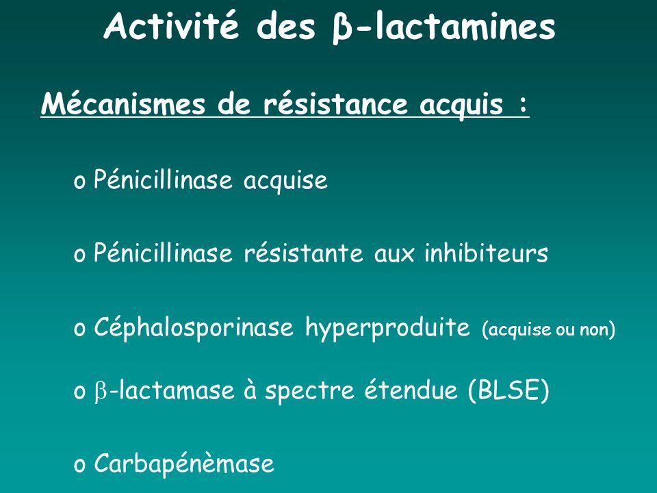 Activité des β-lactamines