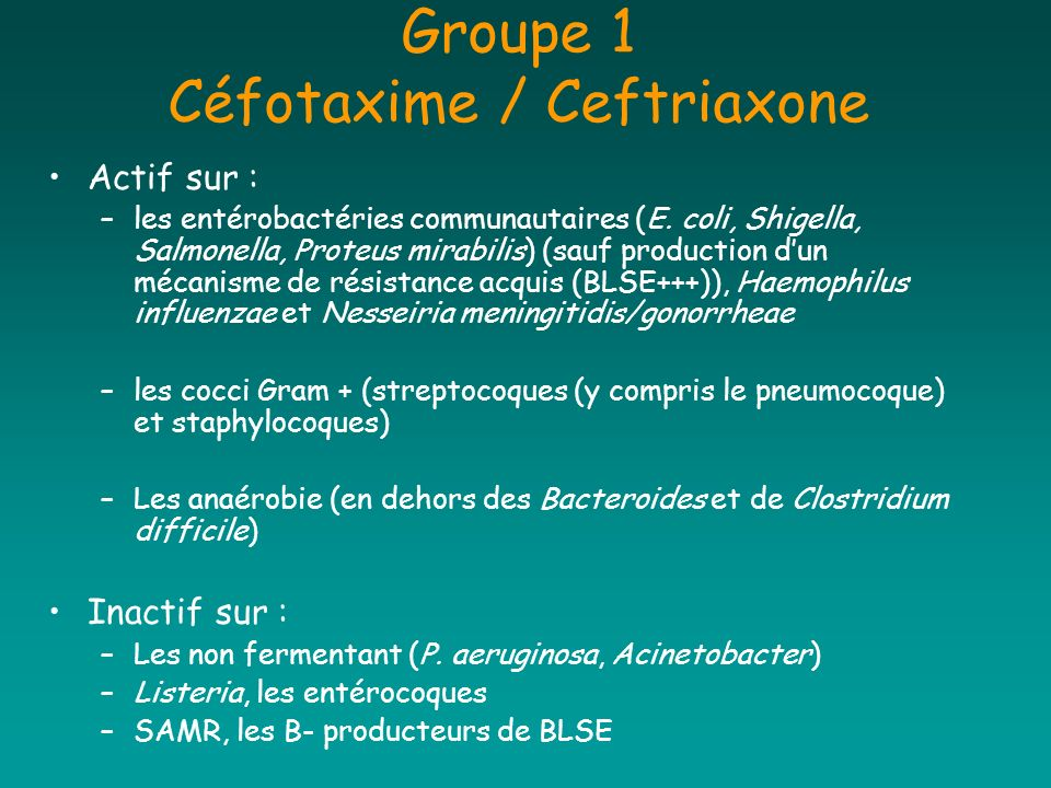 Groupe 1 Céfotaxime / Ceftriaxone