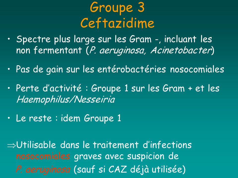 Groupe 3 Ceftazidime Spectre plus large sur les Gram -, incluant les non fermentant (P. aeruginosa, Acinetobacter)