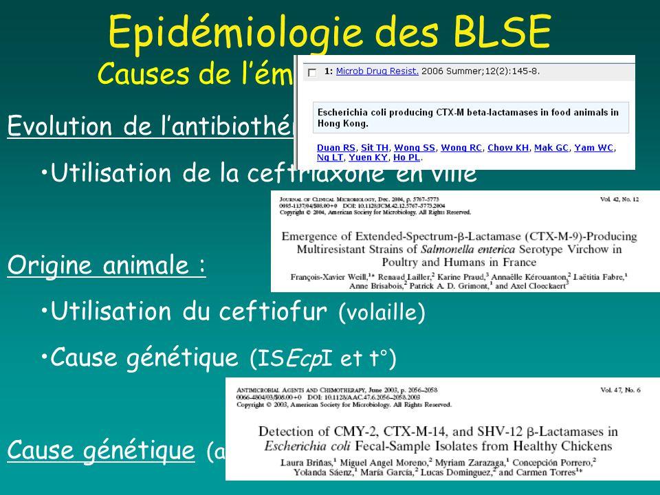 Epidémiologie des BLSE Causes de l'émergence des CTX-M