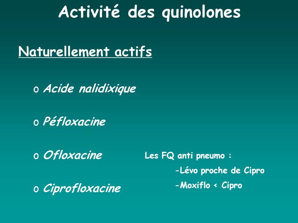 Activité des quinolones