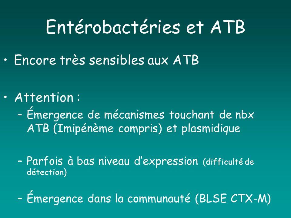 Entérobactéries et ATB