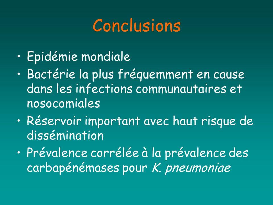 Conclusions Epidémie mondiale