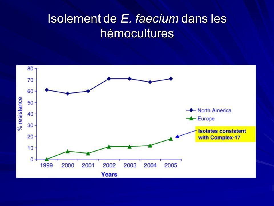 Isolement de E. faecium dans les hémocultures
