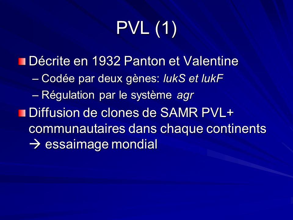 PVL (1) Décrite en 1932 Panton et Valentine
