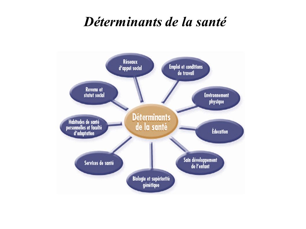 Déterminants de la santé