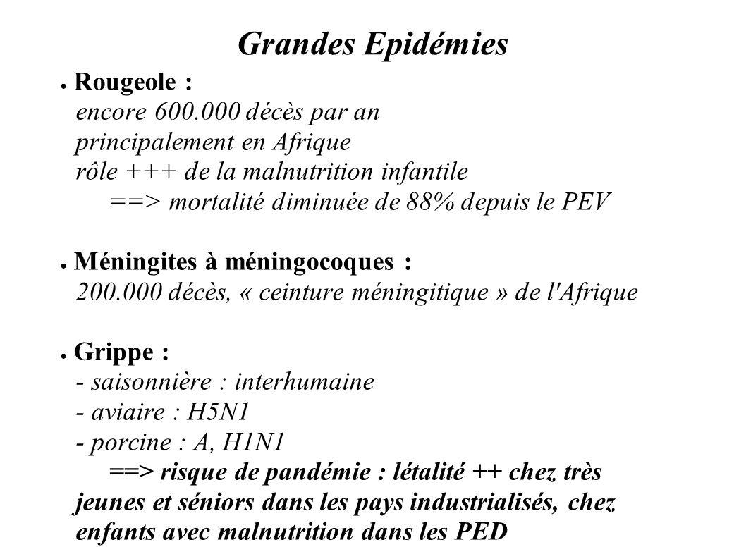 Grandes Epidémies Rougeole : encore 600.000 décès par an