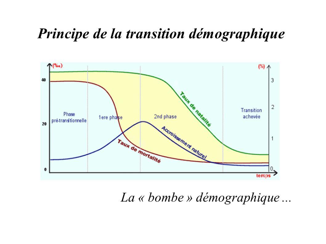 Principe de la transition démographique
