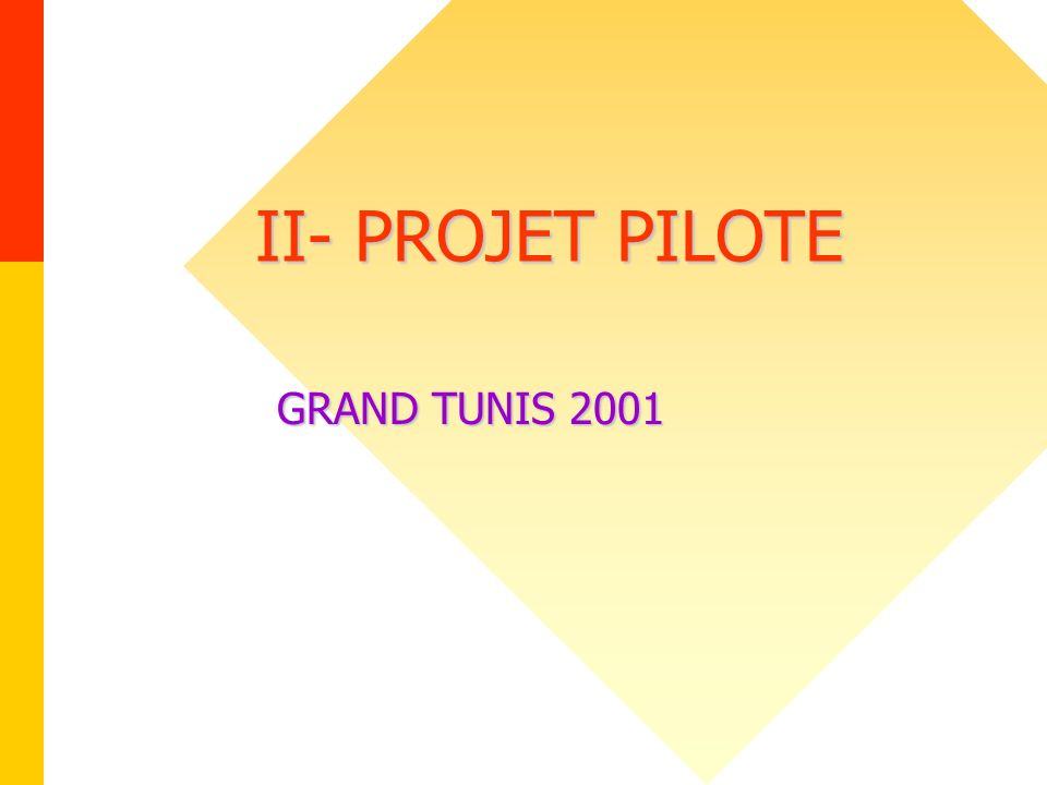 II- PROJET PILOTE GRAND TUNIS 2001