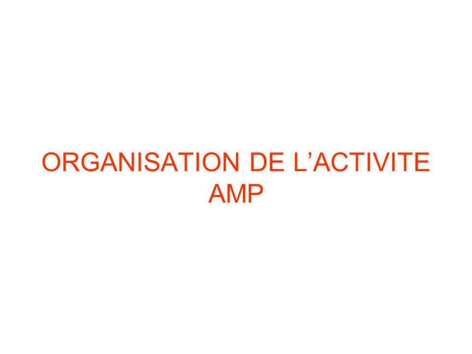 ORGANISATION DE L'ACTIVITE AMP