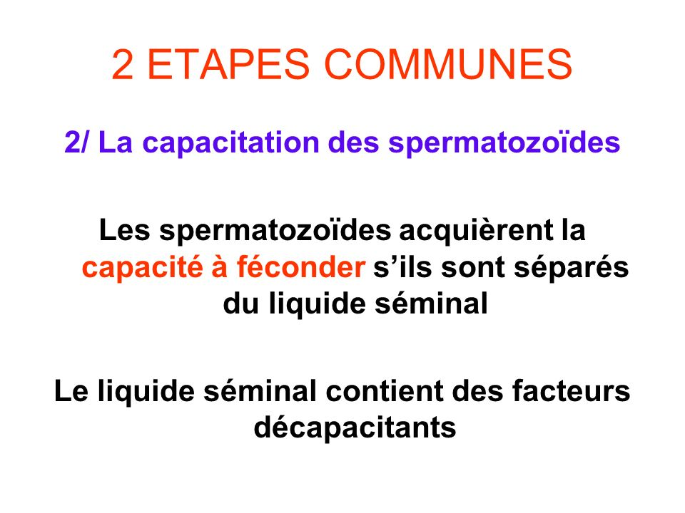 2 ETAPES COMMUNES 2/ La capacitation des spermatozoïdes