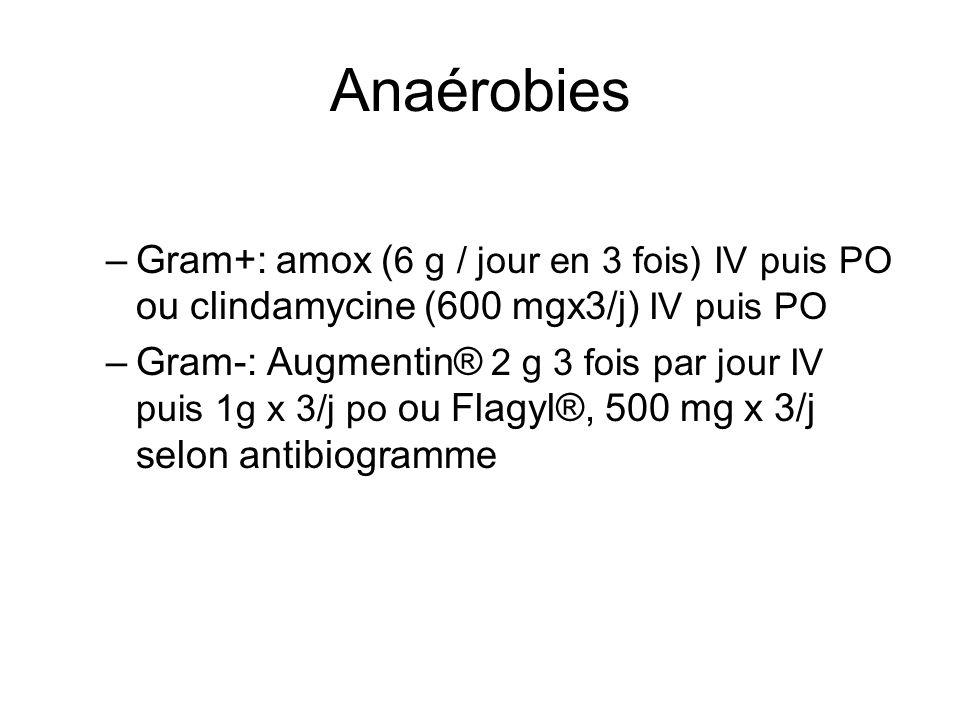 Anaérobies Gram+: amox (6 g / jour en 3 fois) IV puis PO ou clindamycine (600 mgx3/j) IV puis PO.