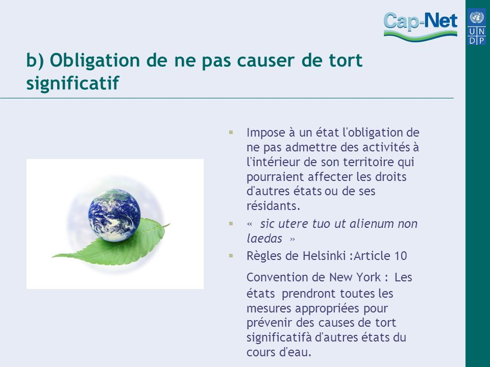 b) Obligation de ne pas causer de tort significatif