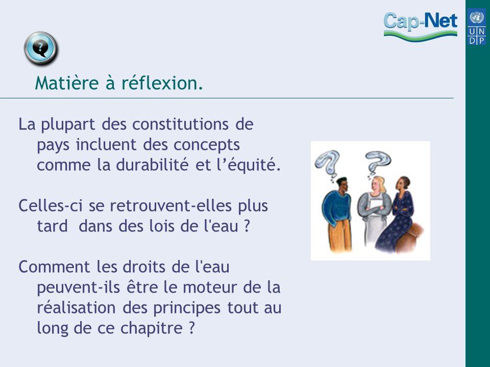 Matière à réflexion.La plupart des constitutions de pays incluent des concepts comme la durabilité et l'équité.
