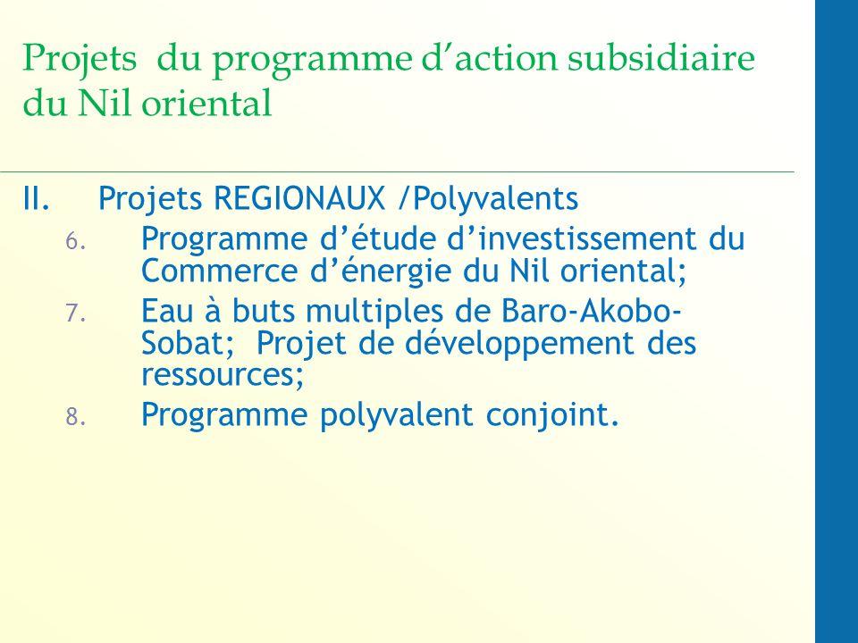 Projets du programme d'action subsidiaire du Nil oriental