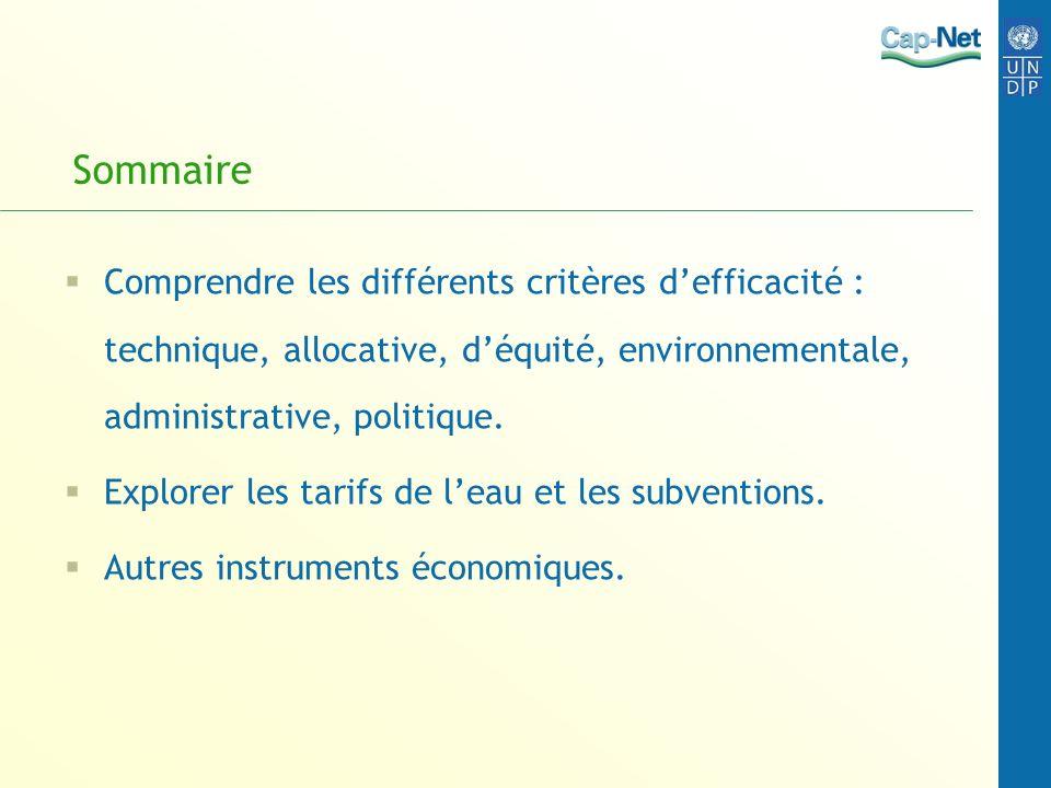 Sommaire Comprendre les différents critères d'efficacité : technique, allocative, d'équité, environnementale, administrative, politique.