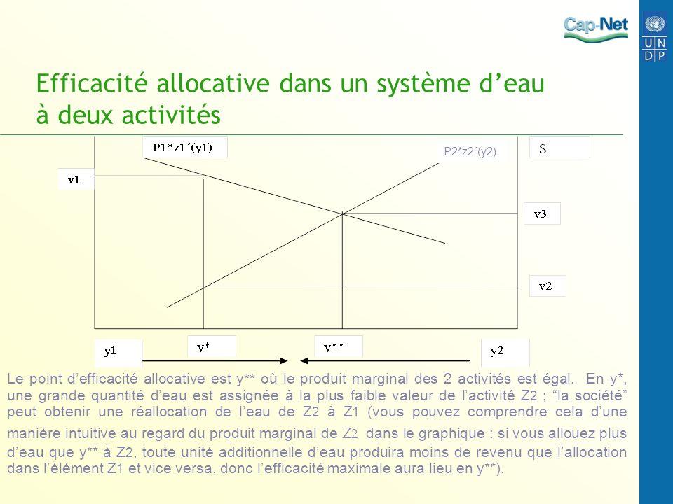 Efficacité allocative dans un système d'eau à deux activités