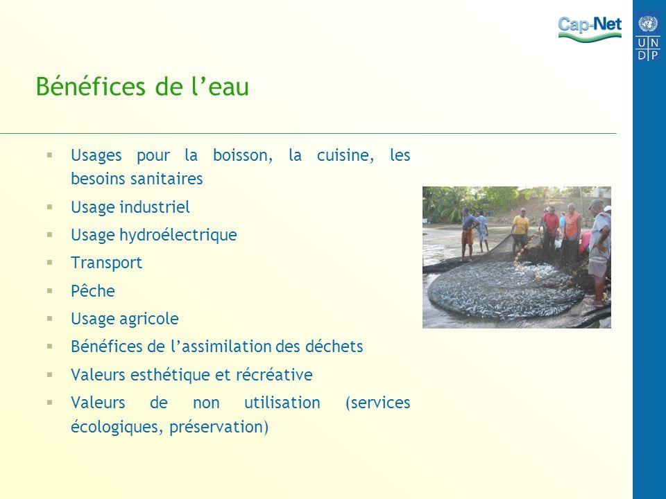 Bénéfices de l'eau Usages pour la boisson, la cuisine, les besoins sanitaires. Usage industriel. Usage hydroélectrique.