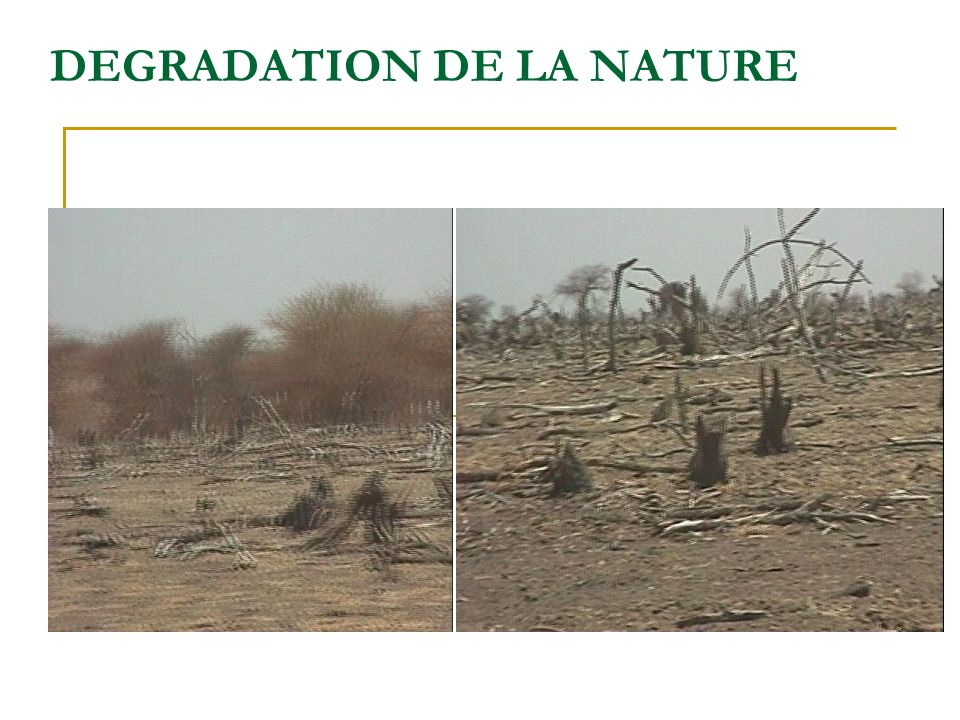 DEGRADATION DE LA NATURE