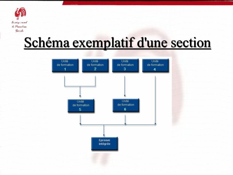 Schéma exemplatif d une section Schéma exemplatif d une section