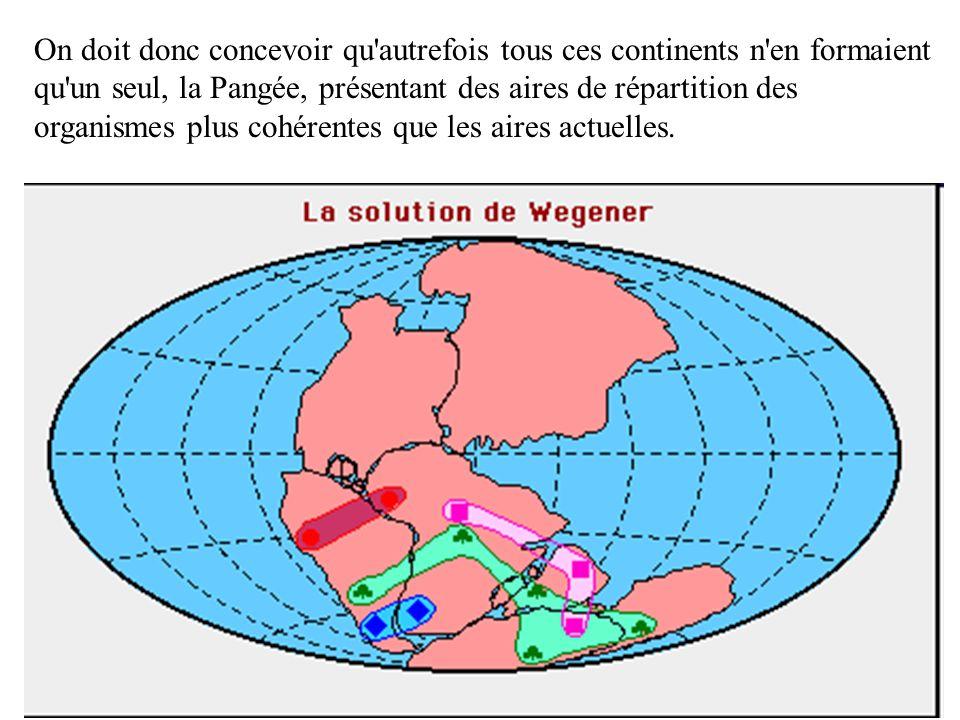 On doit donc concevoir qu autrefois tous ces continents n en formaient qu un seul, la Pangée, présentant des aires de répartition des organismes plus cohérentes que les aires actuelles.