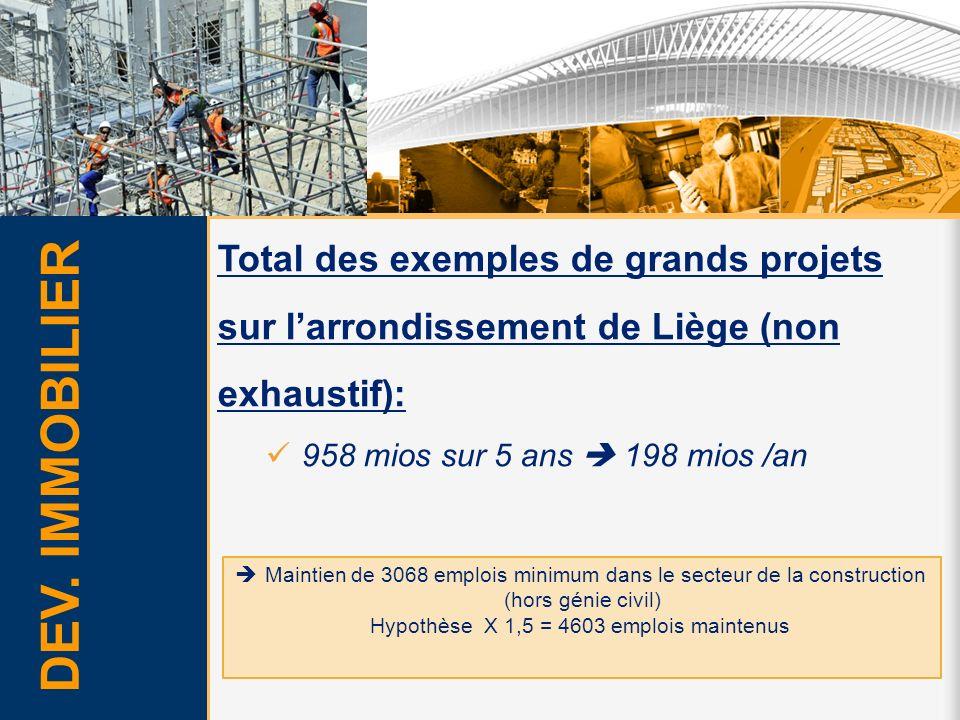 Total des exemples de grands projets sur l'arrondissement de Liège (non exhaustif):