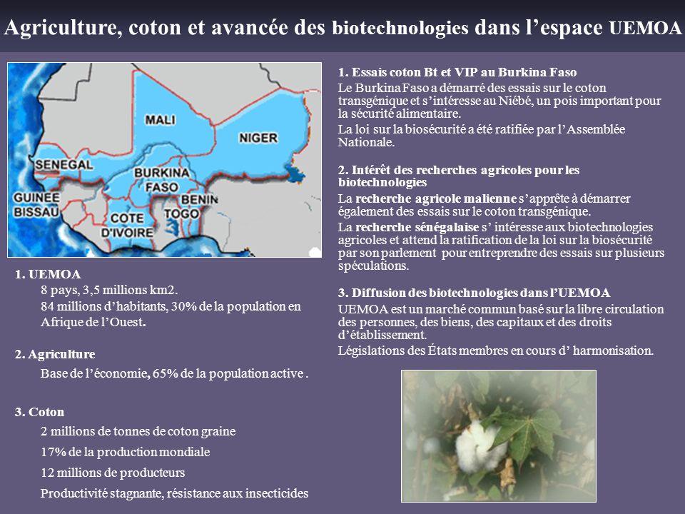 Agriculture, coton et avancée des biotechnologies dans l'espace UEMOA