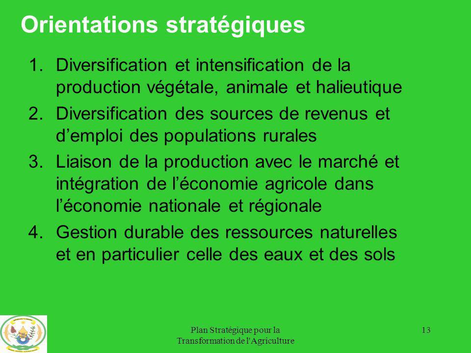Orientations stratégiques