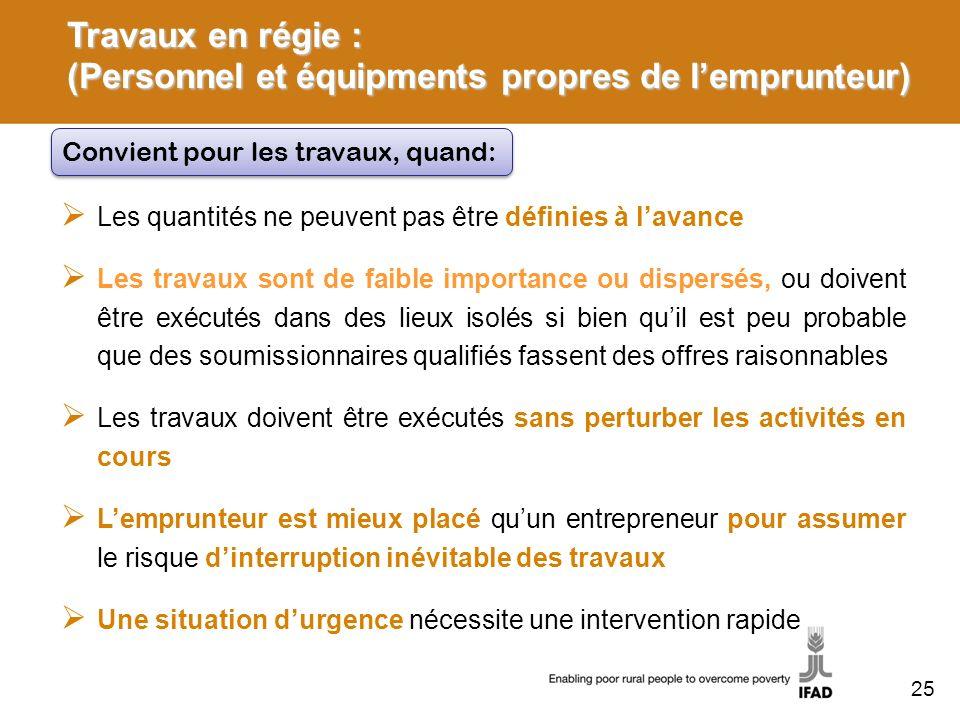 Travaux en régie : (Personnel et équipments propres de l'emprunteur)