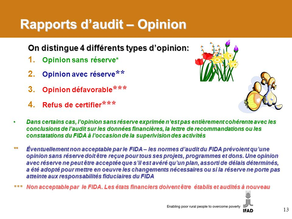 Rapports d'audit – Opinion