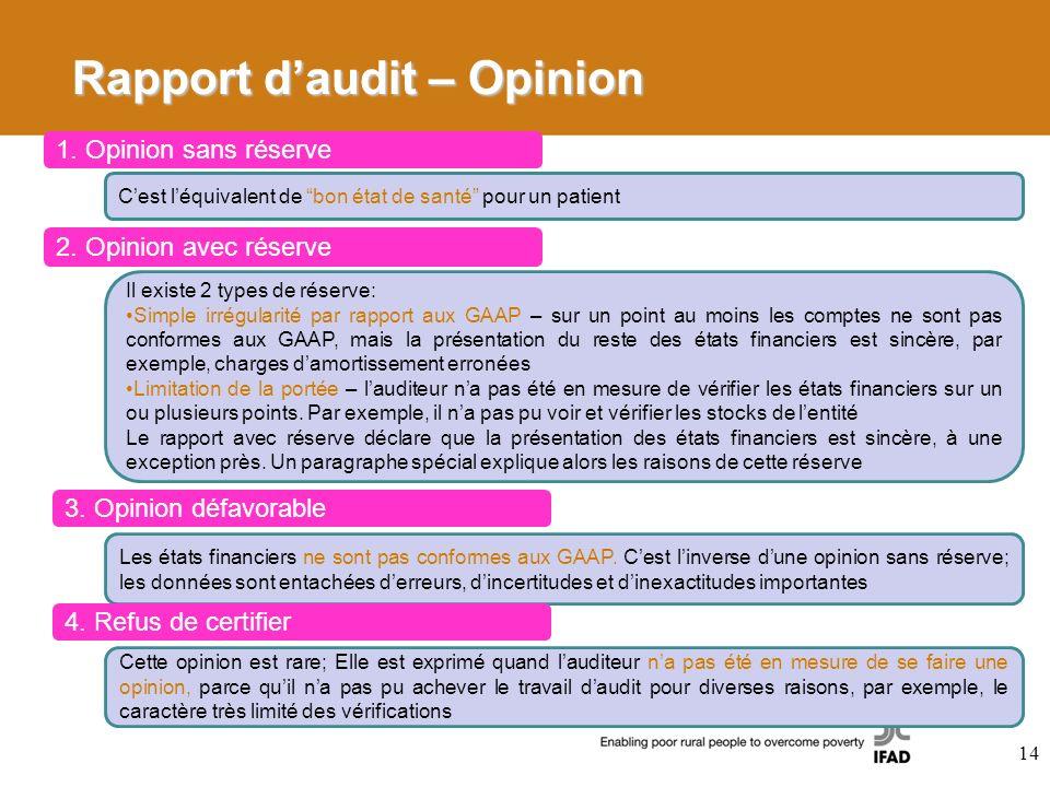 Rapport d'audit – Opinion