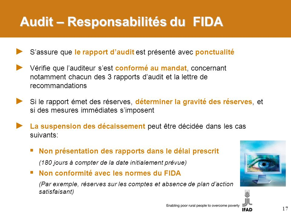 Audit – Responsabilités du FIDA