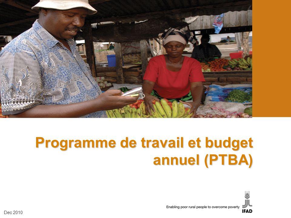 Programme de travail et budget annuel (PTBA)
