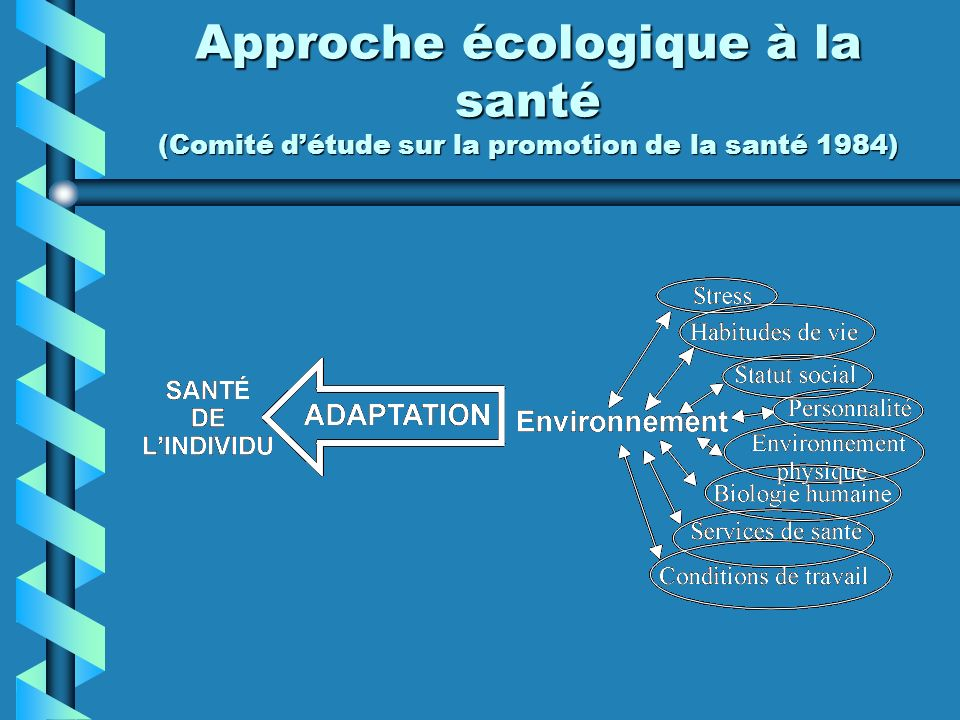 Approche écologique à la santé (Comité d'étude sur la promotion de la santé 1984)