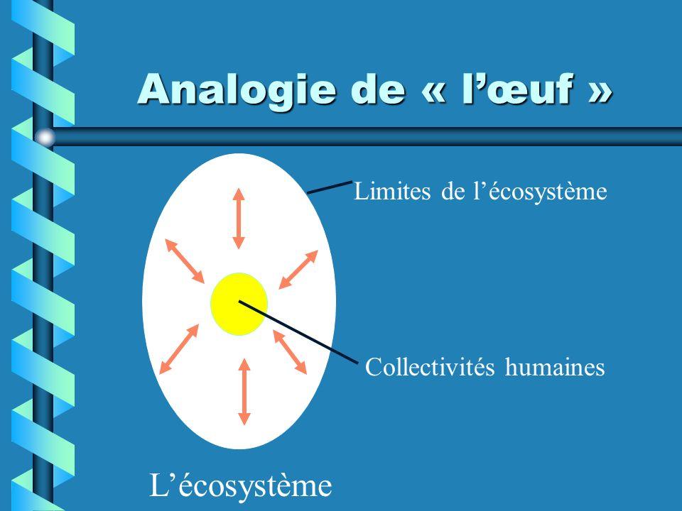 Analogie de « l'œuf » L'écosystème Limites de l'écosystème