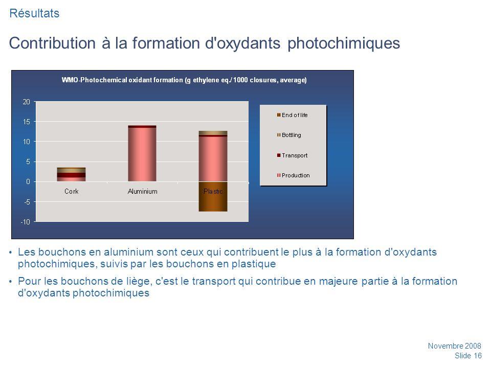 Contribution à la formation d oxydants photochimiques