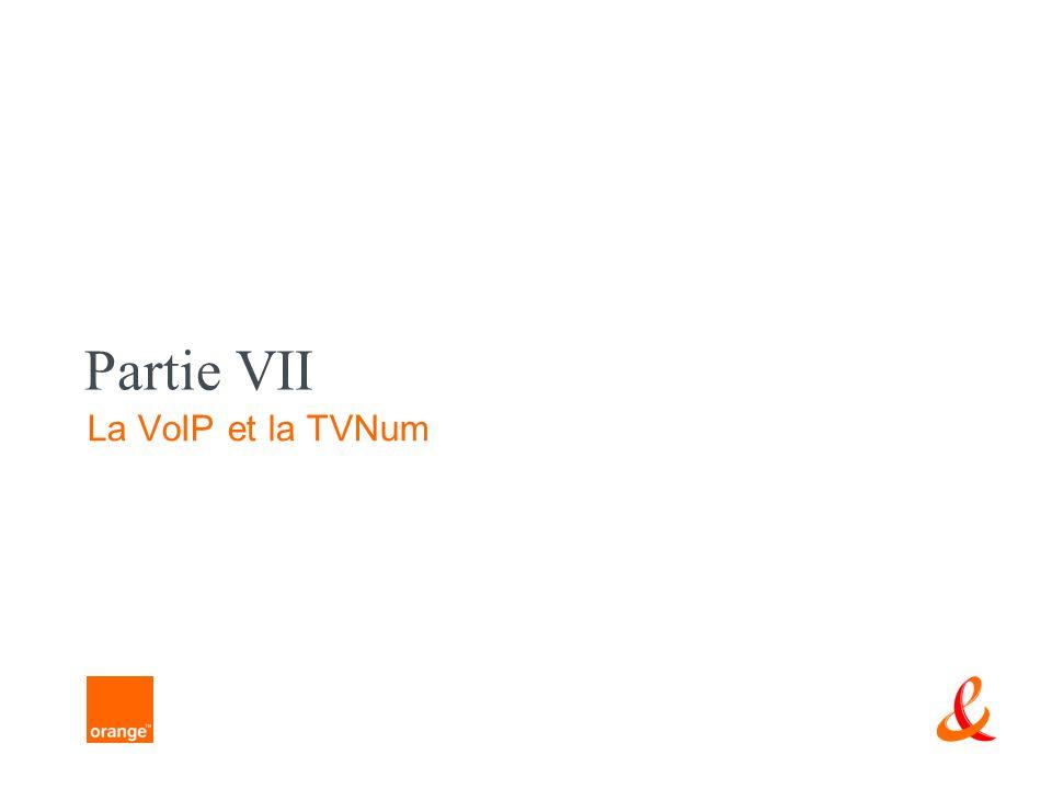 Partie VII La VoIP et la TVNum