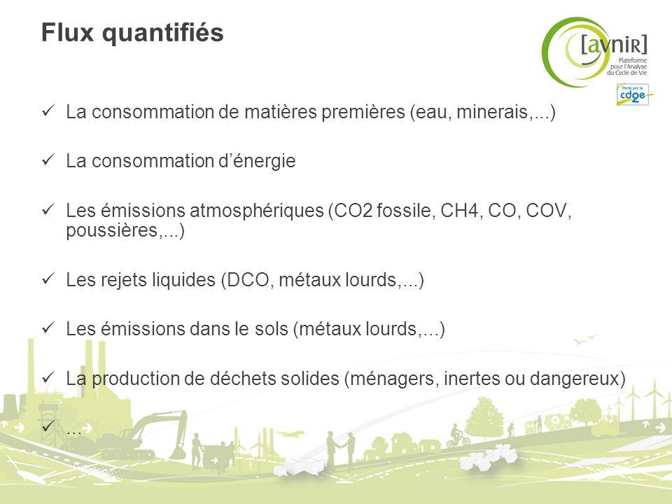 Flux quantifiés La consommation de matières premières (eau, minerais,...) La consommation d'énergie.