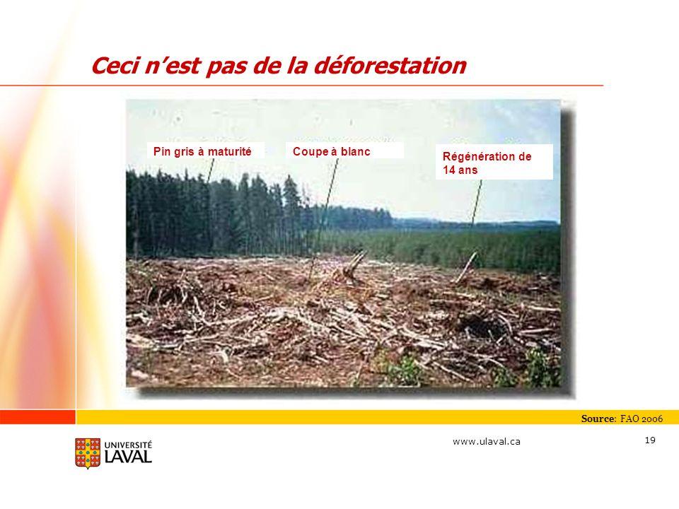 Ceci n'est pas de la déforestation