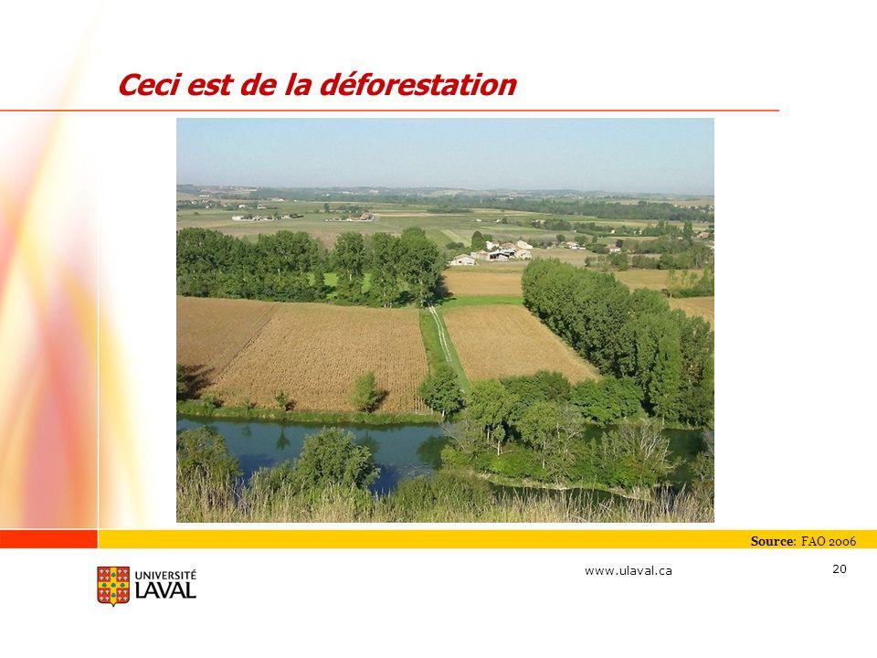 Ceci est de la déforestation